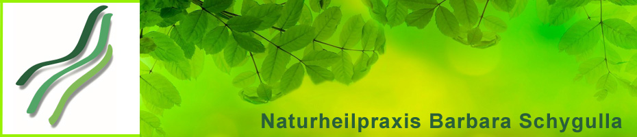 Naturheilpraxis Barbara Schygulla