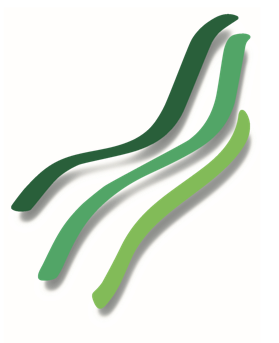Wellen