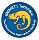 emmett-therapie